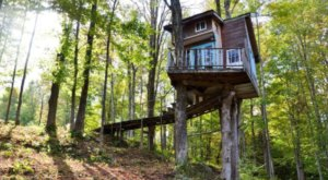 Sleep Underneath The Forest Canopy At This Epic Treehouse In Vermont