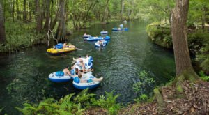 There's Nothing Better Than The Natural Lazy River At Gunpowder Falls State Park In Maryland