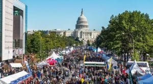 The Epic Outdoor Food Fest In Washington DC You Simply Cannot Miss