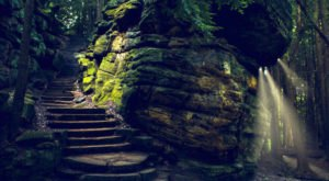 The Ledges Hiking Trail That's Hiding In Ohio Was Once Covered By An Ancient Sea