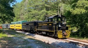 This Wine-Themed Train In Alabama Will Give You The Ride Of A Lifetime