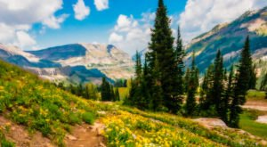 15 Magnificent Trails You Have To Hike In Wyoming Before You Die