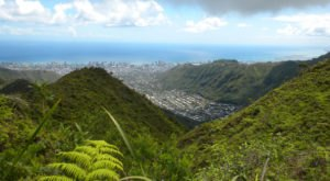The Incredibly Unique Park That's Right Here In Hawaii's Own Backyard