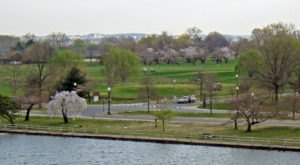 The Incredibly Unique Park That's Right Here In Washington DC's Own Backyard