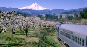 You'll Absolutely Love A Ride On Oregon's Majestic Mountain Train This Summer