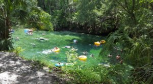 8 Lazy Rivers In Florida That Are Perfect For Tubing On A Summer's Day