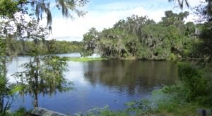 The Incredible Florida Park You'll Want To Visit Over And Over Again