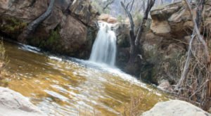 This Gorgeous Waterfall Swimming Hole In Nevada Will Make Your Summer Complete