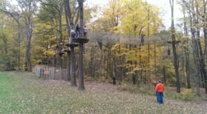 The Stomach-Dropping Canopy Walk You Can Only Find In Indiana