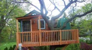 Sleep Underneath The Forest Canopy At This Epic Treehouse In Illinois