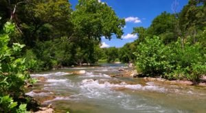 This Spring Fed River In Oklahoma Is The Perfect Spot To Spend A Summer's Day