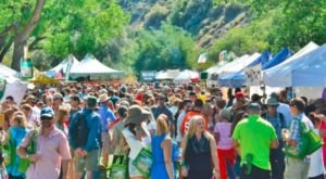 The Incredible Colorado Wine Festival You Simply Cannot Miss