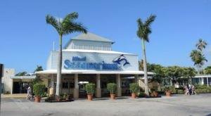 Walk Underwater At This Incredible Aquarium Attraction In Florida