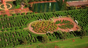 The World's Largest Plant Maze Is Right Here In Hawaii And You'll Want To Visit