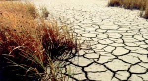 82 Percent Of South Dakota Is Affected By The Drought And It's Truly Heartbreaking