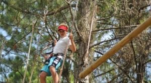 7 Amazing Treetop Adventures You Can Only Have In Mississippi