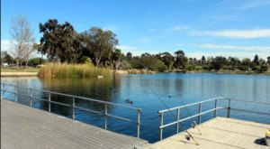 The Magical Lake In Southern California That Is A Picture-Perfect Outdoor Oasis