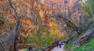Here Are The 10 Best Hikes In Utah's Zion National Park