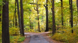 10 Epic Hiking Spots Around Detroit Are Completely Out Of This World