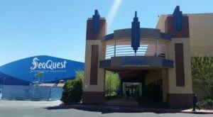 Explore A Magical Underwater Kingdom At This Amazing Nevada Interactive Aquarium