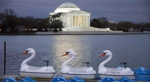 12 Amazingly Fun Things You Can Do In Washington DC In An Hour Or Less