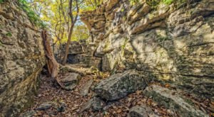 The Hiking Trail Hiding In Alabama That Will Transport You To Another World