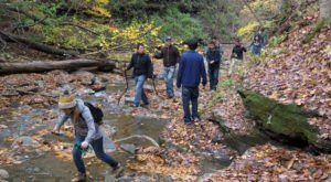 9 Epic Outdoorsy Things In St. Louis Anyone Can Do