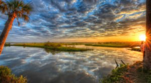 The Florida Preserve That Will Make You Feel Like You Walked Into A Fairy Tale