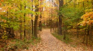 10 Epic Hiking Spots Around Columbus That Are Completely Out Of This World