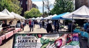 These 20 Incredible Farmers Markets In Chicago Are A Must Visit