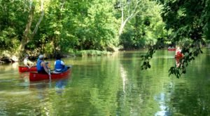 8 Perfect Places To Kayak And Canoe Around Louisville This Summer