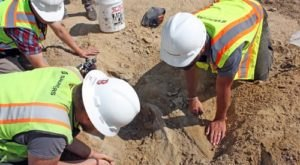 A Triceratops Skull Was Just Unearthed In Colorado And It's Nothing Short Of Amazing