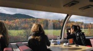 The Fall Foliage Train Ride Through New York With Panoramic Views