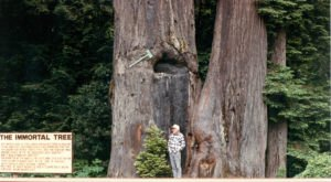 11 Strange Spots In Northern California That Will Make You Stop And Look Twice