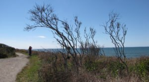 5 Greatest Waterfront Walking Paths For Peaceful Escapes In Rhode Island