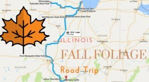 This Dreamy Road Trip Will Take You To The Best Fall Foliage In All Of Illinois