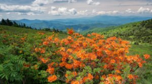 5 Last-Minute Outdoor Adventures You Must Have Before Tennessee's Summer Is Gone For Good