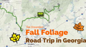 This Dreamy Road Trip Will Take You To The Best Fall Foliage In All Of Georgia