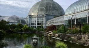 Why You Need To Visit Detroit's Belle Isle Conservatory Right Now