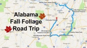 This Dreamy Road Trip Will Take You To The Best Fall Foliage In All Of Alabama