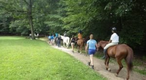Most People Don't Know There's A Hidden Horseback Riding Trail Right In The Middle of DC