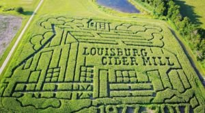 Get Lost In These 10 Awesome Corn Mazes In Kansas This Fall