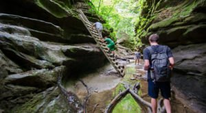 If There Are Only 5 Hikes You Ever Do In Indiana, Make Them These