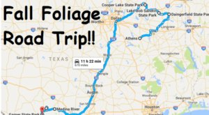 This Dreamy Road Trip Will Take You To The Best Fall Foliage In All Of Texas