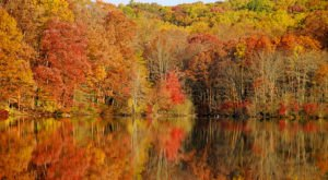 19 Photos That Prove Fall In Pennsylvania Is Like Nowhere Else In The World