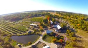 These 8 Charming Cider Mills In Massachusetts Will Have You Longing For Fall