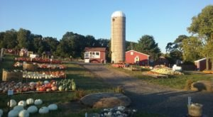 11 Harvest Festivals In Pennsylvania That Will Make Your Autumn Awesome