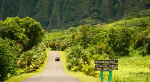 These 16 Road Trips In Hawaii Will Lead You To Places You'll Never Forget