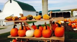 10 Picture Perfect Fall Day Trips To Take In Ohio