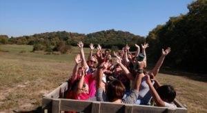 7 Hayrides Around Nashville That Will Make Your Autumn Awesome